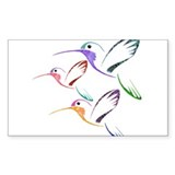 Hummingbird 10 Pack