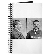 charles ponzi Journal