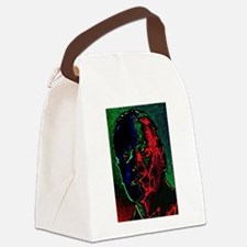 Distorted Memory Canvas Lunch Bag