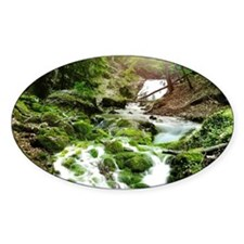 Woodland Stream Decal