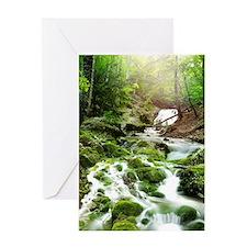 Woodland Stream Greeting Cards