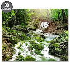 Woodland Stream Puzzle