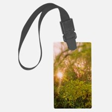 Sunlight Through Palo Verde Luggage Tag
