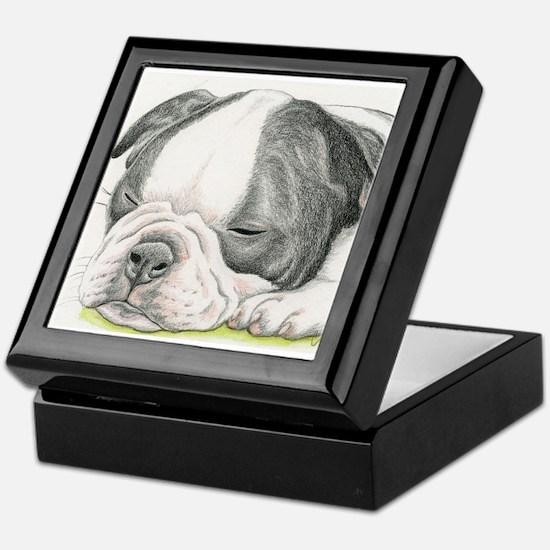 Sleepy Boston Terrier Puppy Keepsake Box