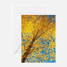 Golden Birch Greeting Cards