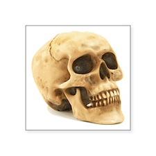 "Human Skull Symbol Square Sticker 3"" X 3&quot"