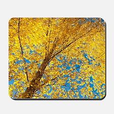 Golden Birch Mousepad