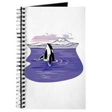 Scenic Orca Design Journal