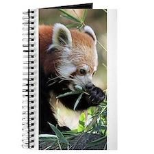 Red Panda 002 Journal