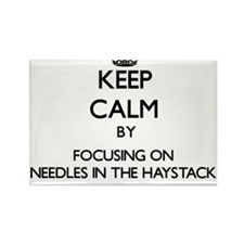 Keep Calm by focusing on Needles In The Ha Magnets