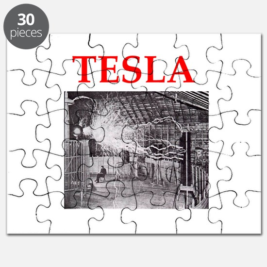 Cute Tesla Puzzle