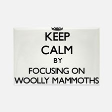 Keep Calm by focusing on Woolly Mammoths Magnets