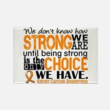 Kidney Cancer HowStrongWeAre (Ora Rectangle Magnet