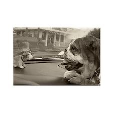 Bulldog vs Bulldog Rectangle Magnet