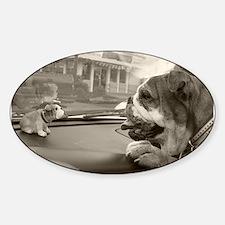 Bulldog vs Bulldog Oval Decal