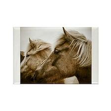Icelandic Pony Duo Magnets