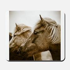 Icelandic Pony Duo Mousepad