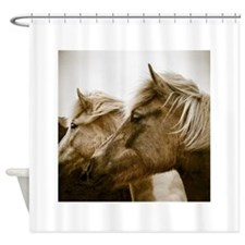 Icelandic Pony Duo Shower Curtain