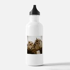 Icelandic Pony Duo Water Bottle