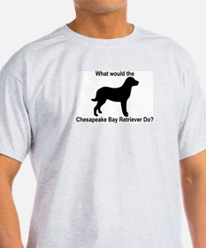 What would the Chesapeake Bay T-Shirt