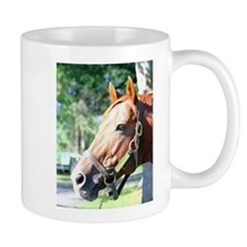 "SECRETARIAT - ""Big Red"" Mugs"