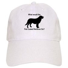 What would the Flat Coated Re Baseball Cap