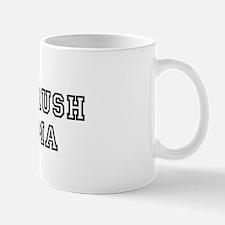 I got a crush on Obama  Mug