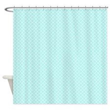 Park Avenue Aqua Shower Curtain