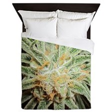 Cannabis Sativa Bud Queen Duvet