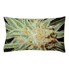 Cannabis Sativa Bud Pillow Case