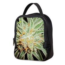 Cannabis Sativa Bud Neoprene Lunch Bag