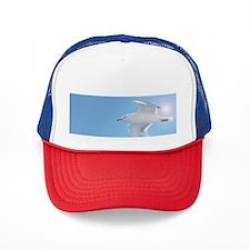 Cute Skyscape Trucker Hat