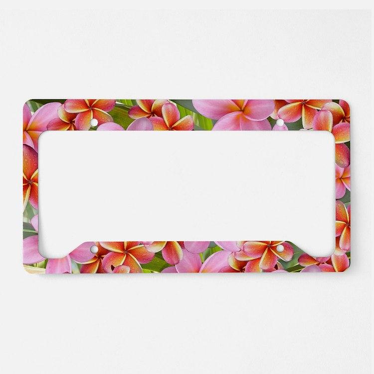 Pink Plumeria Flowers License Plate Holder
