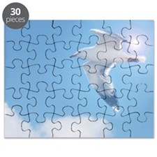 Cute Seagull Puzzle