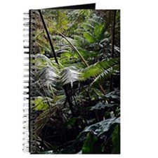 Tropical Fern Forest 03 Journal