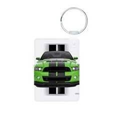 2013stanggreen.png Keychains