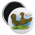 Golden Polish Fowl Magnet