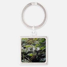 Tropical Fern Forest 03 Keychains