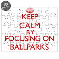 Ballparks Puzzle