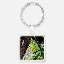Coconut Palm Keychains