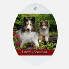 Christmas Friends Ornament (Oval)