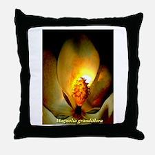 Magnolia grandiflora night bl Throw Pillow