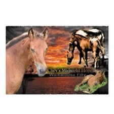 Funny Walkaloosa Postcards (Package of 8)