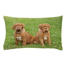 Dogue Pups Pillow Case