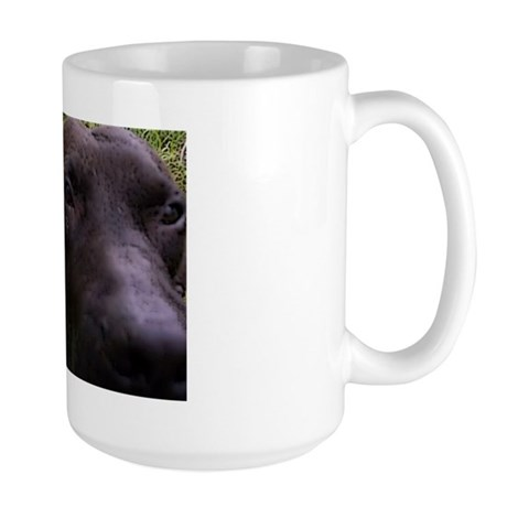 """Point of View"" Large Mug"