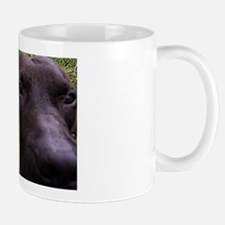 """Point of View"" Mug"