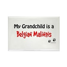 Belgian Malinois Grandchild Rectangle Magnet
