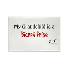 Bichon Frise Grandchild Rectangle Magnet