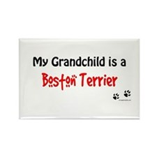 Boston Terrier Grandchild Rectangle Magnet