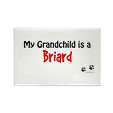 Briard Grandchild Rectangle Magnet